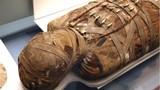 Kinh hoàng xác ướp gieo rắc dịch bệnh khắp châu Âu xưa