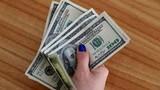 Tỷ giá ngoại tệ ngày 28/11, USD vượt lên, tăng mạnh