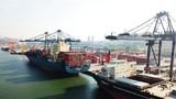 Cảng Quảng Ninh của Tập đoàn T&T sắp giao dịch trên UPCoM định giá 610 tỷ đồng