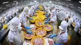 Vĩnh Hoàn: Lãi quý 3 giảm 40%, đầu tư chứng khoán gần 130 tỷ đồng