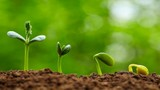 2 cách đơn giản để gieo mầm hạnh phúc, đừng nên bỏ qua