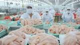 Giới nhà giàu Trung Quốc thích ăn cá tra Việt