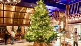 Cây thông Noel đắt nhất thế giới, giá 15 triệu USD ở Tây Ban Nha