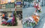 Hàng loạt cột đèn Hà Nội nở hoa chào mừng Quốc tế Phụ nữ