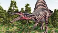 Cận cảnh loài khủng long ăn thịt kỳ lạ nhất thế giới