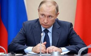 Ông Putin ký sắc lệnh ngừng mọi chuyến bay Nga tới Ai Cập