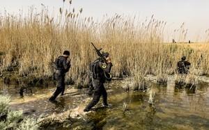 Iraq tung lực lượng đặc nhiệm ráo riết truy lùng phiến quân IS