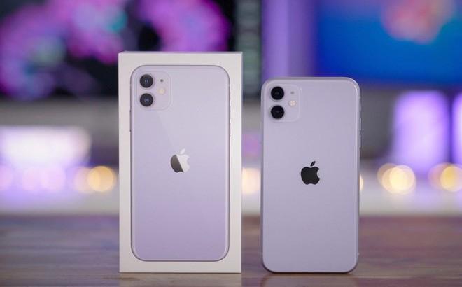 iPhone 11 xả kho, giảm giá sốc trong ngày đầu năm