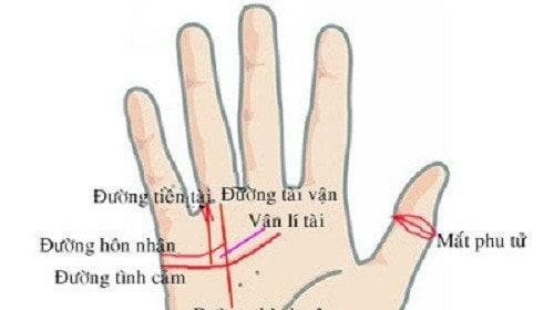 Bàn tay có 3 điểm này chủ nhân làm gì cũng gặp may mắn