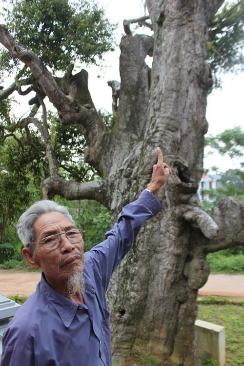 Chuyen ly ky o mieu tho su hoc co nhat Viet Nam-Hinh-4