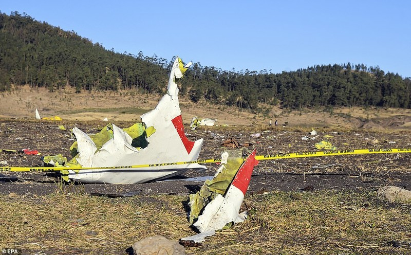 Toan canh vu roi may bay Boeing tham khoc o Ethiopia-Hinh-2
