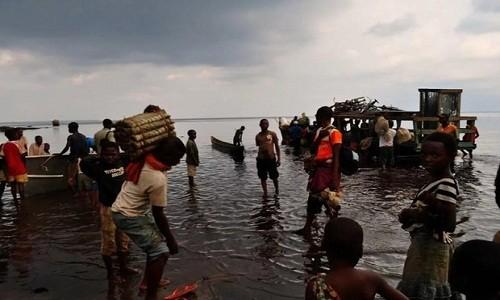Chim tau tai Congo: Hang tram nguoi thuong vong