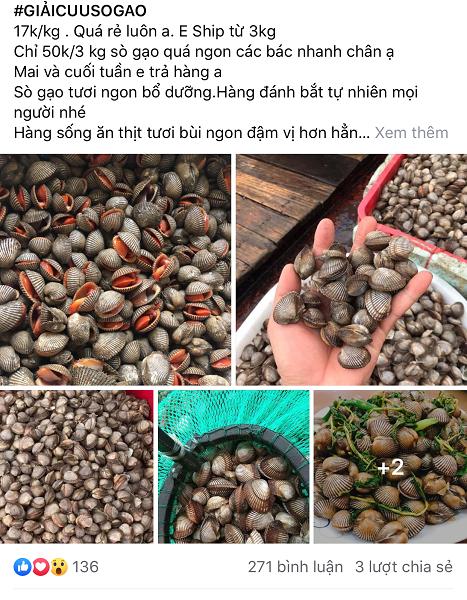 So gao gia re chua tung co tran ngap cho online, gia chi 17.000d/kg