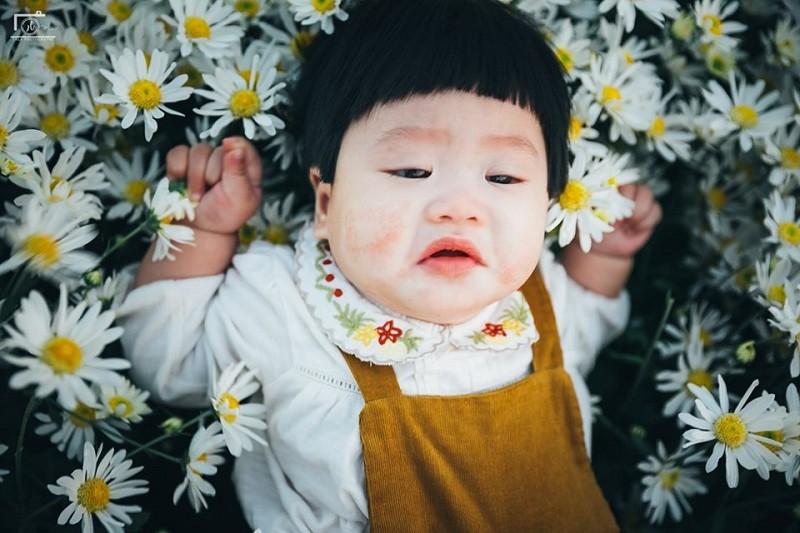 Hai huoc bo anh em be meu mao giua vuon cuc hoa mi