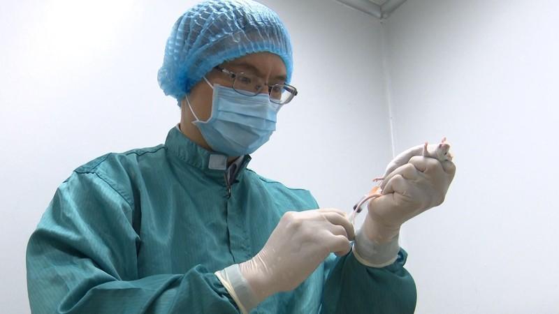 "Vaccine chong COVID-19 ""Made in Viet Nam"" sap duoc thu nghiem tren co the nguoi-Hinh-2"
