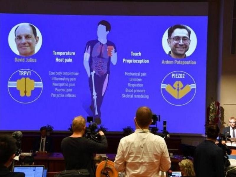 Hanh trinh 2 nha khoa hoc bat ngo doat giai Nobel Y hoc 2021-Hinh-2