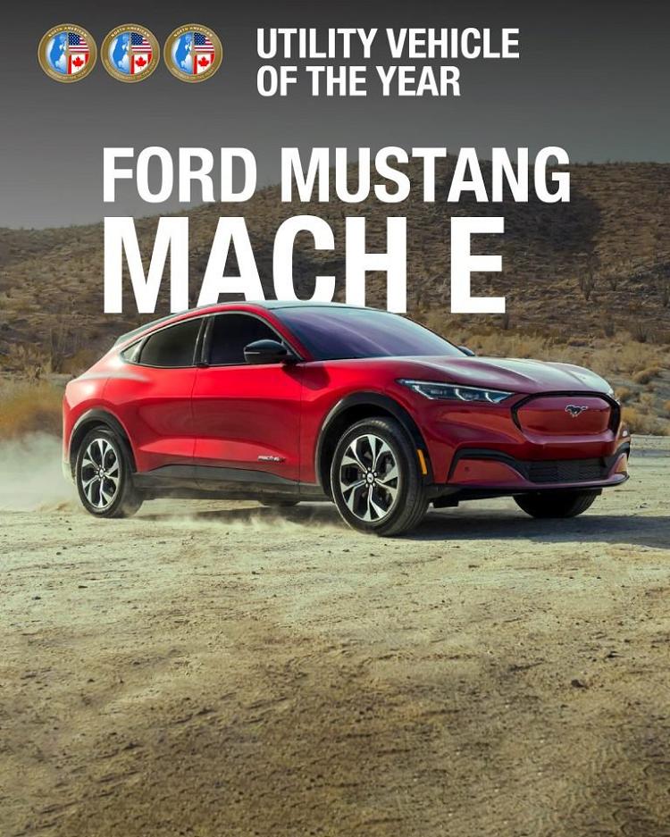 Hyundai Elantra, Ford F-150 va Mustang Mach-E la giai xe cua nam-Hinh-3
