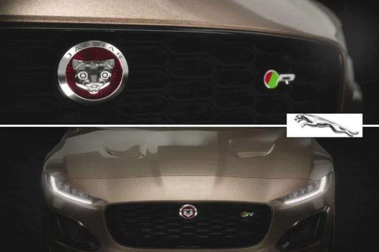 """Dieu gi xay ra neu logo xe oto bien thanh """"dong vat nhi""""?-Hinh-4"""