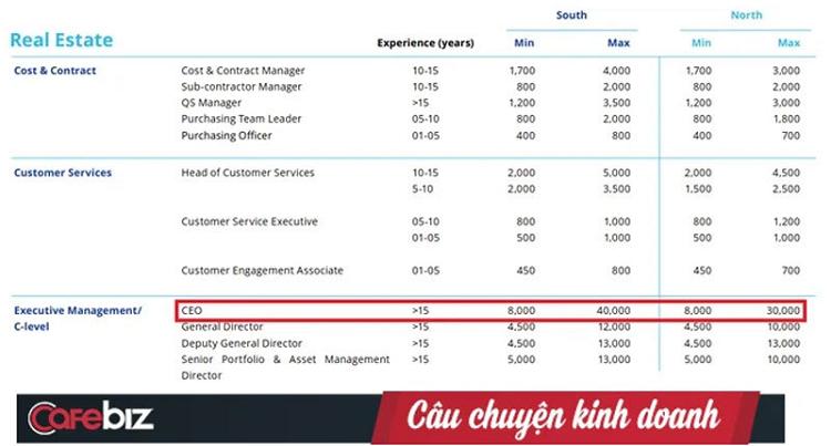 He lo 3 nganh dang hot o Viet Nam: CEO nhan luong toi 1 ty dong/thang-Hinh-2