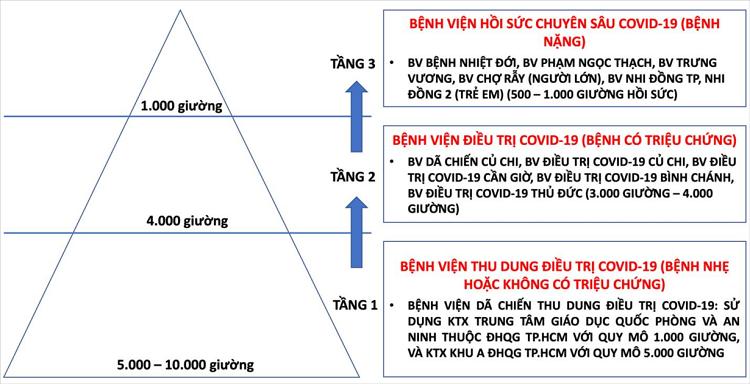 Vi sao TP HCM co the can nhac phuong an dieu tri F0 tai nha?-Hinh-2