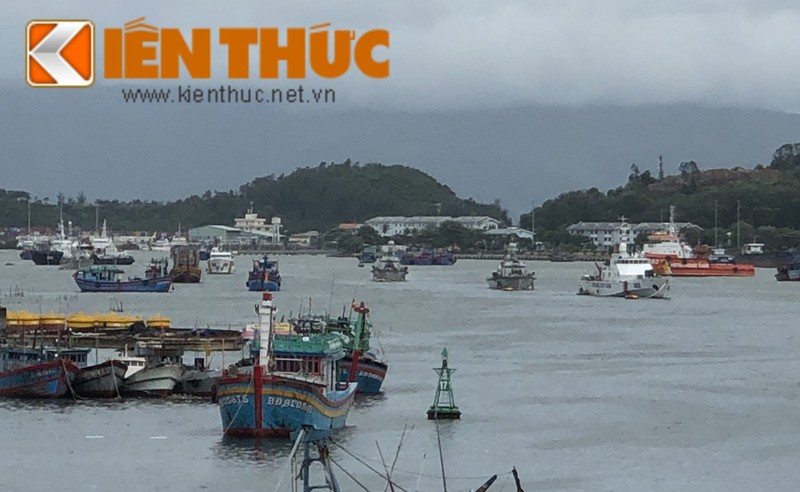 Xem tau hai quan, kiem ngu, canh sat bien Viet Nam doi pho Bao so 5-Hinh-3