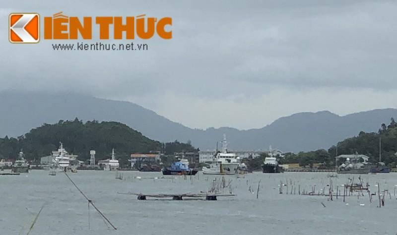 Xem tau hai quan, kiem ngu, canh sat bien Viet Nam doi pho Bao so 5-Hinh-8