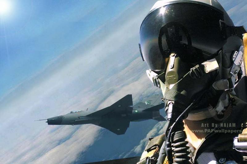 Khong quan My lam the nao de ngan phi cong lai F-22 bo tron?-Hinh-7