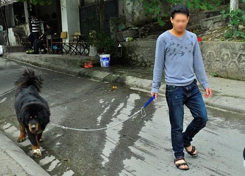 Tranh cai kich liet viec Ha Noi ra quan bat cho tha rong-Hinh-2