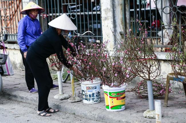 Dao no som, nguoi dan ru nhau mua ve choi Tet Duong lich-Hinh-6