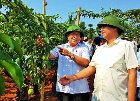 """Quang Tri co Chu tich UBND tinh moi sau 4 thang """"trong ghe"""""""