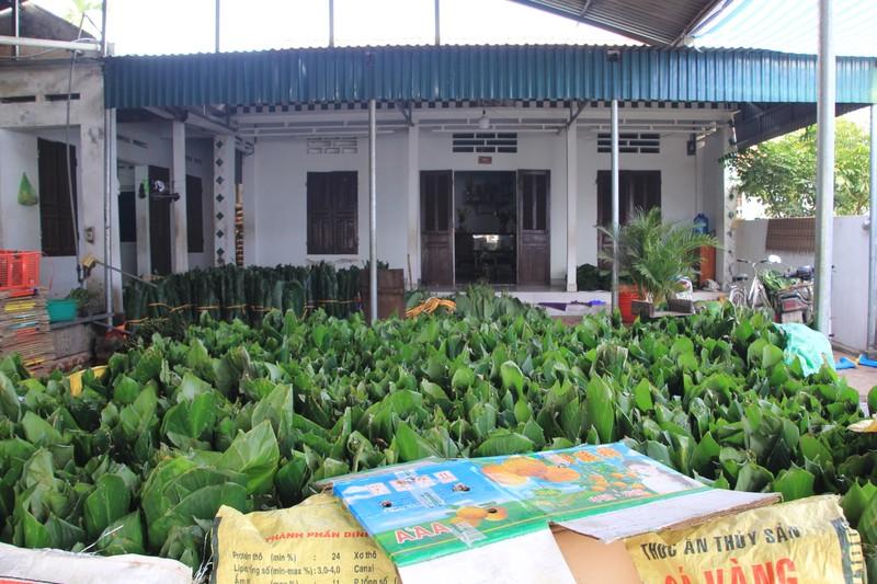 Tet o lang banh chung noi tieng Phu Tho-Hinh-2