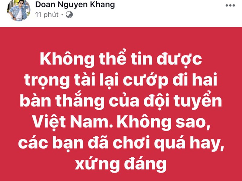 Mr Dam tuc dien vi trong tai phu nhan ban thang cua doi tuyen Viet Nam-Hinh-9