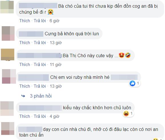 Thich thu chung kien cau chuyen di lac cua 'co cho' thong minh-Hinh-2