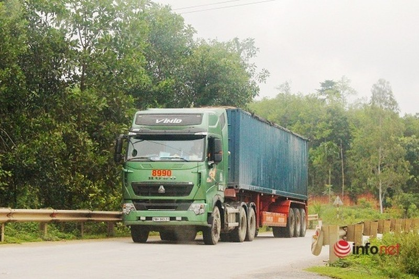 Xe cat noc container cho cat dap ngon 'lam mua lam gio', CSGT bo tay-Hinh-13