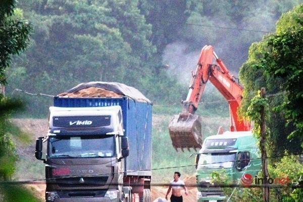 Xe cat noc container cho cat dap ngon 'lam mua lam gio', CSGT bo tay-Hinh-5