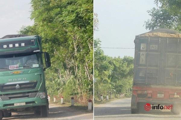 Xe cat noc container cho cat dap ngon 'lam mua lam gio', CSGT bo tay-Hinh-6