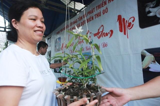 Thuong vu lan dot bien 200 ty dong chan dong dan choi dat Viet-Hinh-5