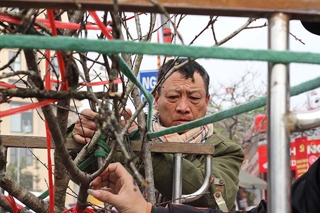 Lo dao dan tem dau tien xuong Ha Noi phuc vu Tet Nguyen dan-Hinh-4