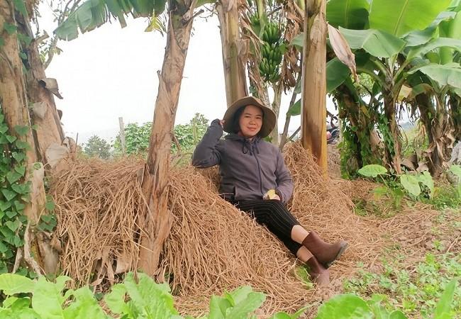 Bo viec luong cao ve que khoi nghiep, 8x Hai Phong thu ca ty dong/nam