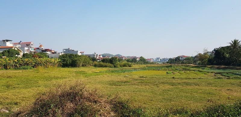 Sai sot ho so moi thau Du an Khu dan cu Hung Dao: Co huy thau?