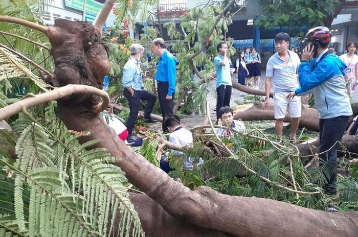 """""""Cay do trong truong... trach nhiem cua toi"""": Ban linh Hieu truong Nguyen Van Phuc"""
