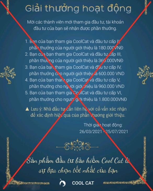Sap san Coolcat: Nghin ty dong 'boc hoi' sau mot dem-Hinh-2