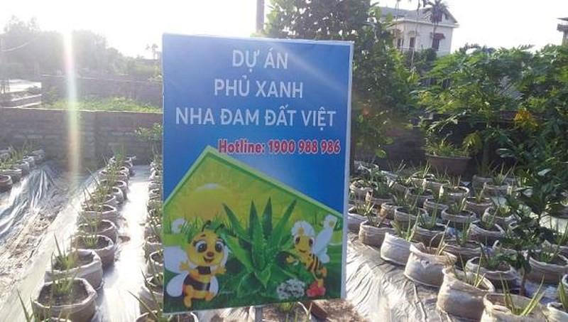 Bat thuong du an trong cay nha dam cua Cty Biobee Viet Phap