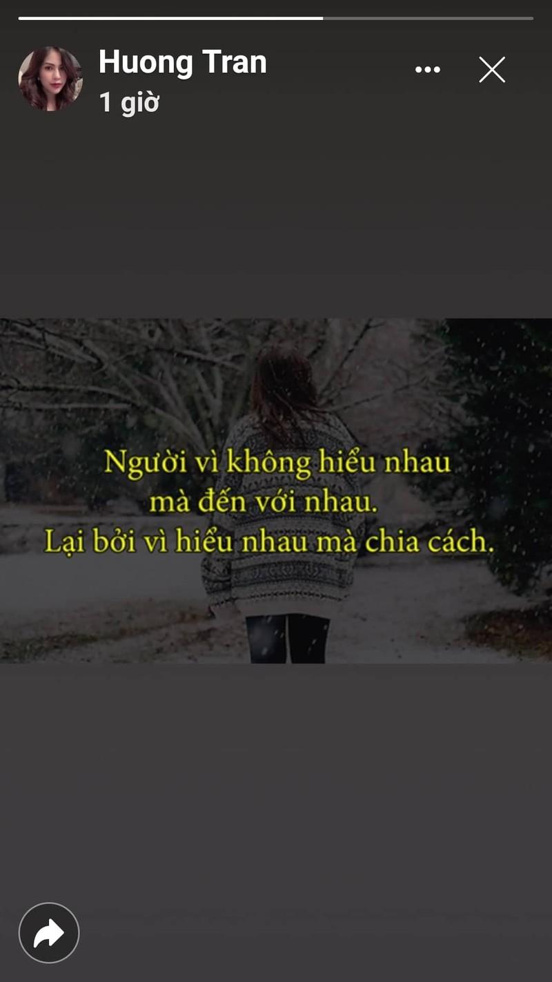 "Vo cu Viet Anh phat ngon ""soc"" khi cap Song - Song ly hon-Hinh-2"