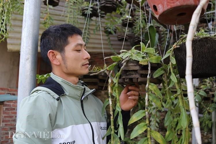 La ma hay: Cho lan rung 'uong' nuoc luoc du du thu hang tram trieu