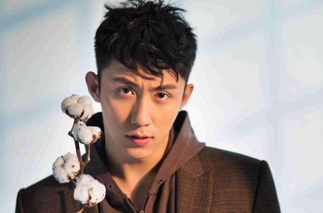 Vo cu nam dien vien Hoang Canh Du tu tu gay soc-Hinh-2