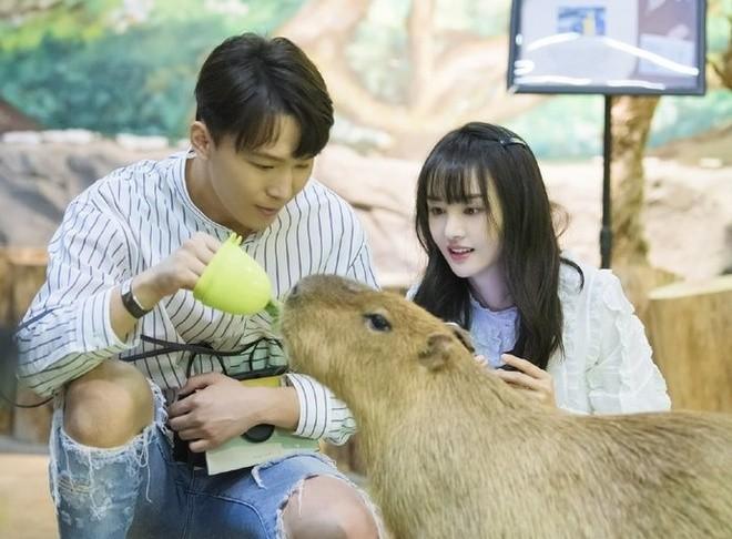 Ro nghi van Trinh Sang co hai con voi tinh cu Truong Hang-Hinh-2