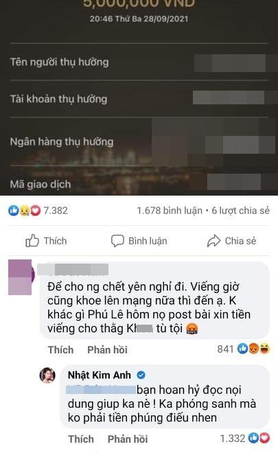 Nhat Kim Anh bi chi trich