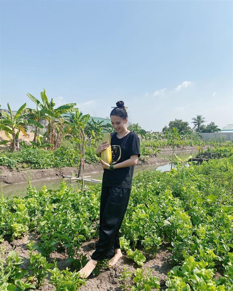 Angela Phuong Trinh khoe cuoc song binh di khi tro ve que noi-Hinh-4
