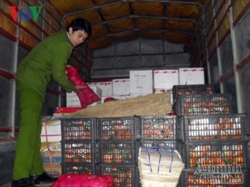 Quang Ninh Bat giu hon 600kg hoa qua nhap lau tu Trung Quoc